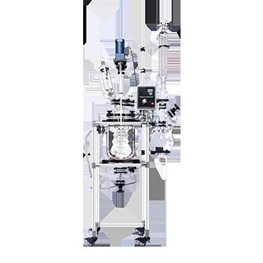 10L Mini Jacketed Fermenter Bioreactor Glass Reactor